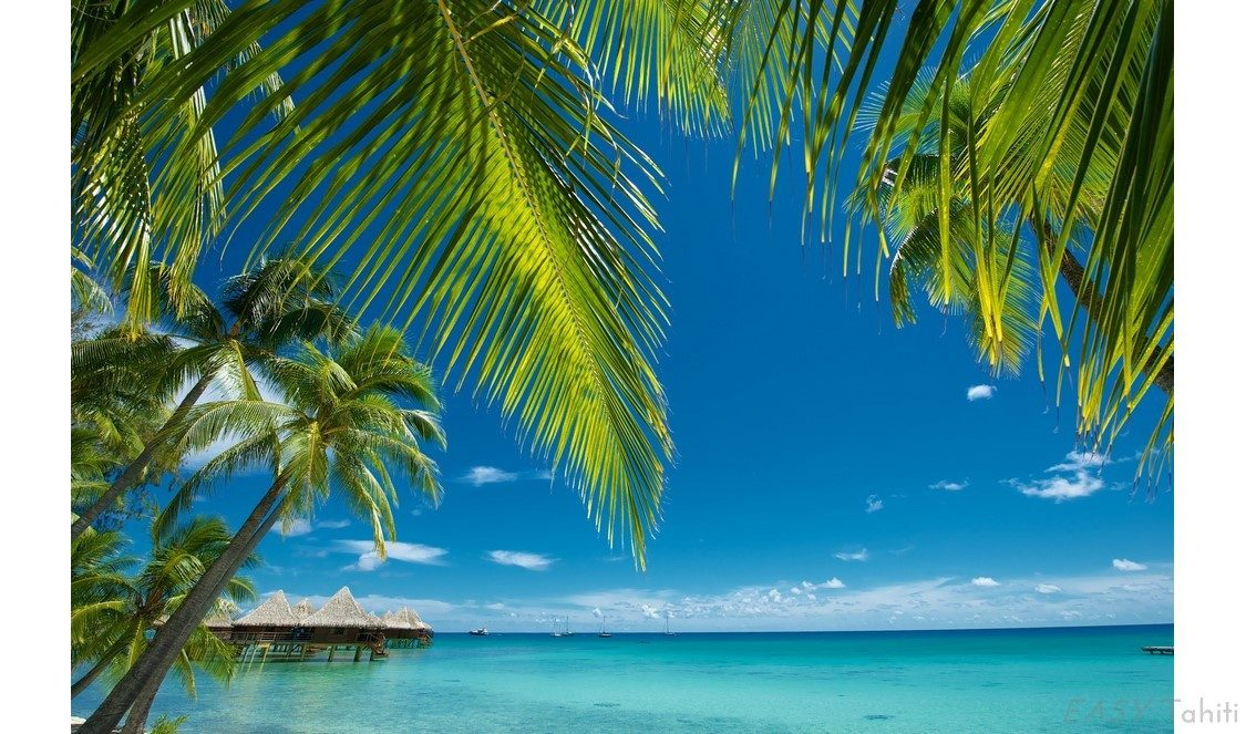 list thumbtahiti bora bora rangiroa vacation package