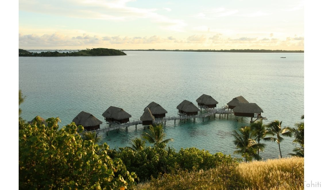 Sofitel Bora Bora Private Island photo 5
