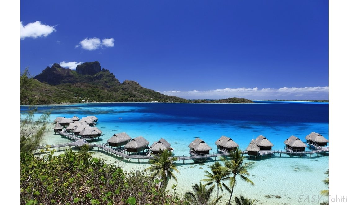 Sofitel Bora Bora Private Island photo 25