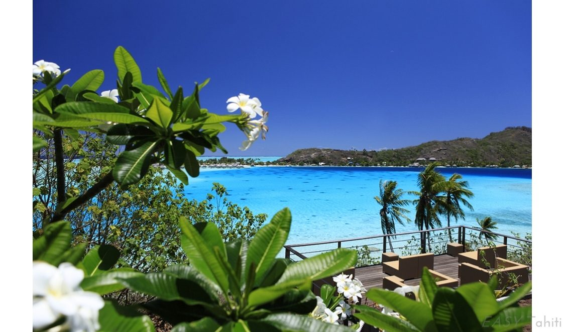 Sofitel Bora Bora Private Island photo 26