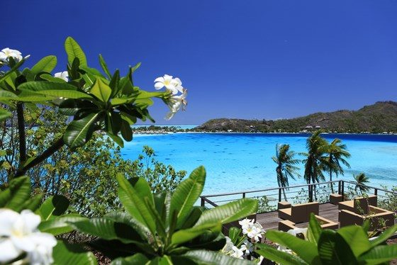 Sofitel Bora Bora Private Island photo 15