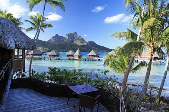 Sofitel Bora Bora Private Island photo 19