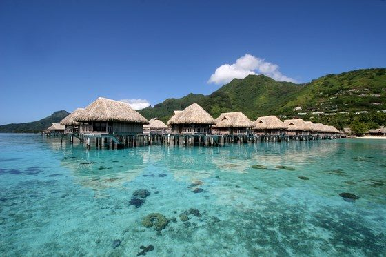 Sofitel Moorea Ia Ora Beach Resort photo 1