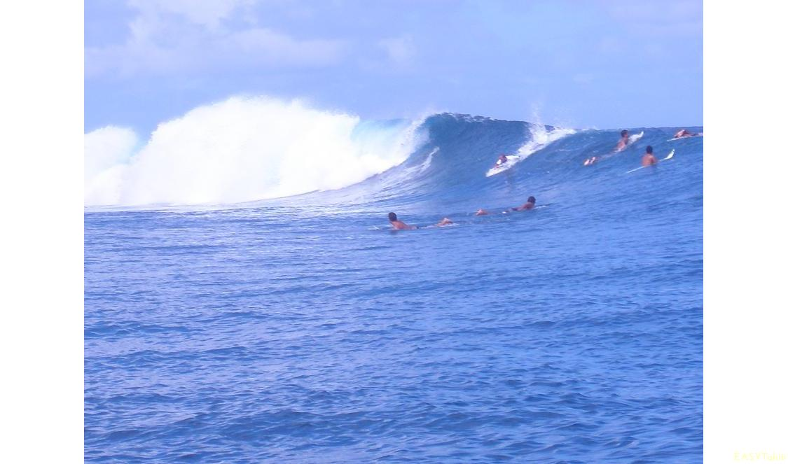 Reva Teahupoo photo 34